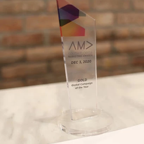 Meet the 2020 AMA Awards Winners