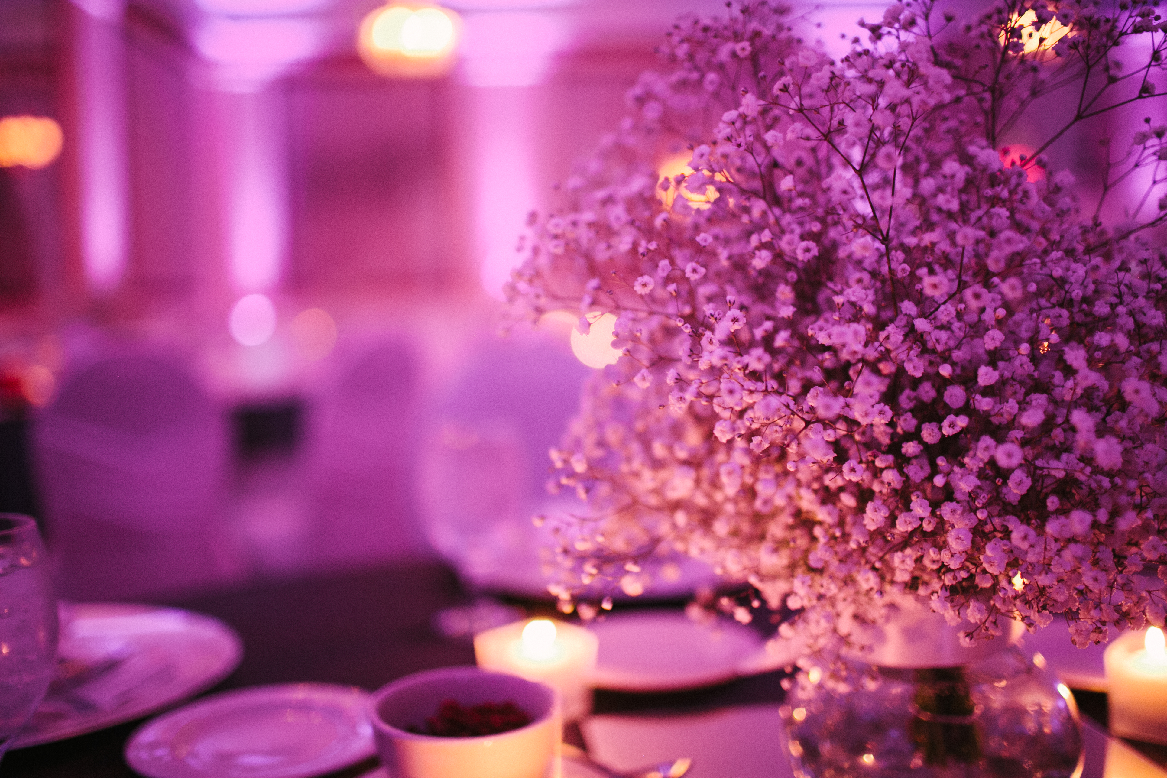 Purple Wedding Style Couture