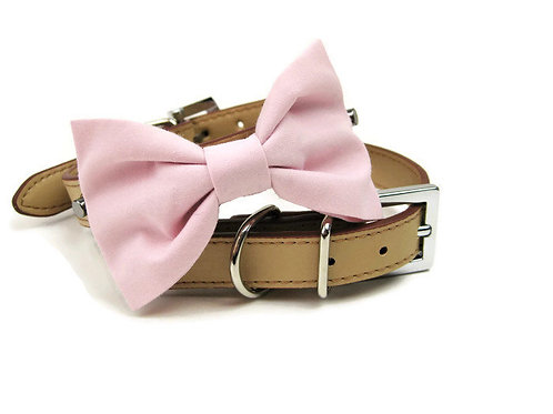 Pale Pink Bow tie collar | Dog bowtie collar