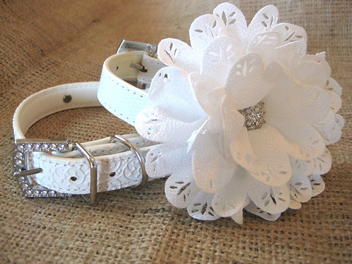 The Cammie eyelet flower collar with - 6 color options