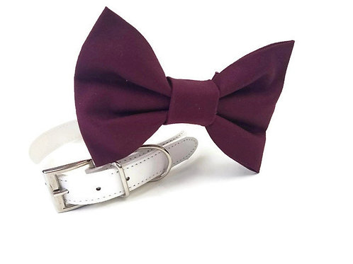 Burgundy bow tie collar | Dog bowtie collar