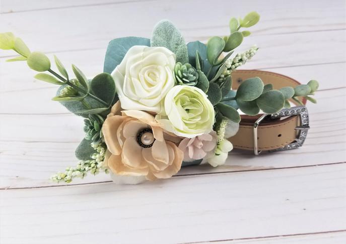 Succulent floral collar
