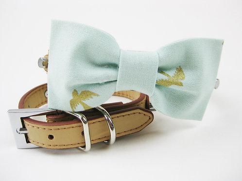 Goldbird Bow tie collar | Mint and gold bowtie collar