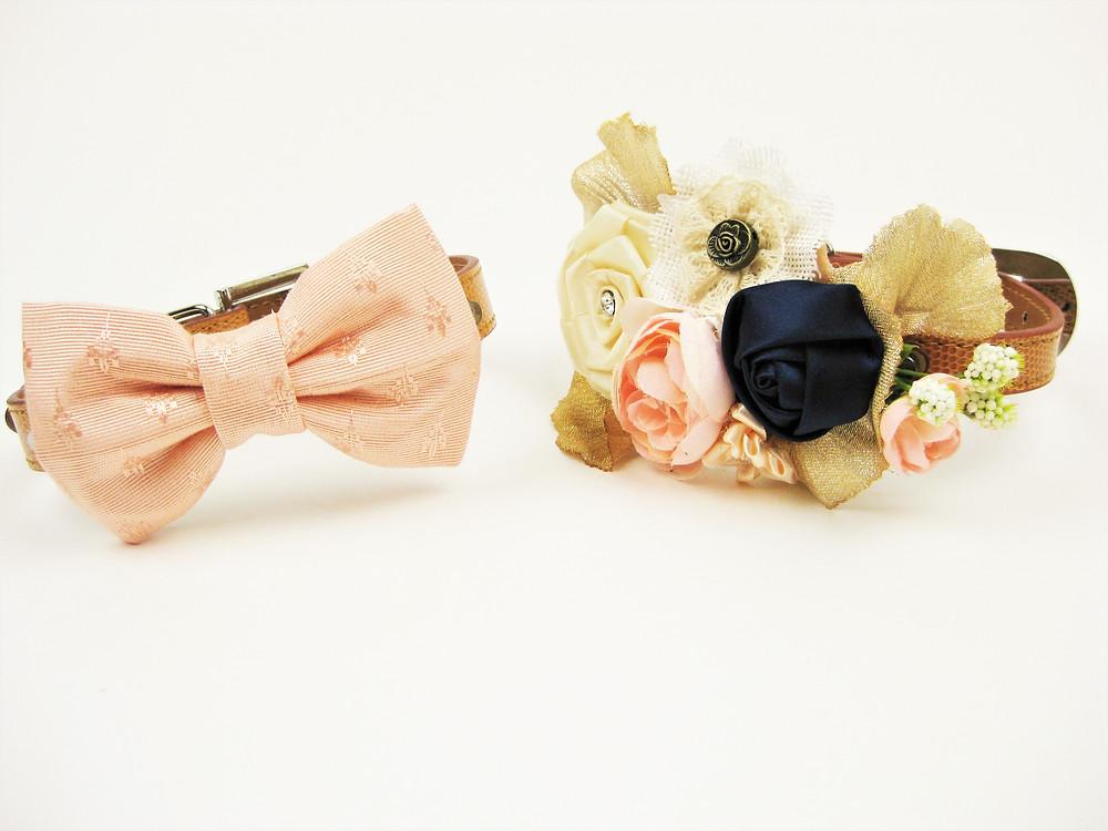 Bluebird collar and matching bowtie