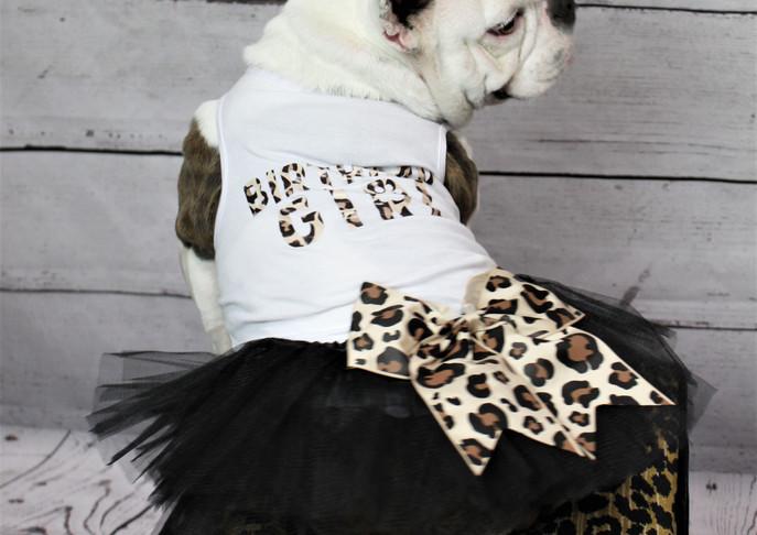 Cheetah birthday girl