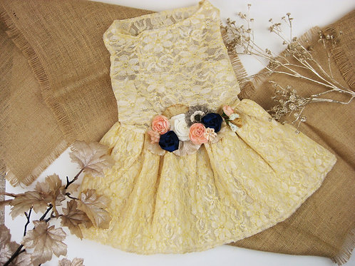 Gold Bluebird Dog Dress