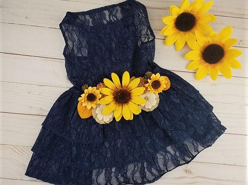 Navy Sunflower Dog Dress