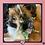 Thumbnail: Mauve and Blush Succulent Floral Collar