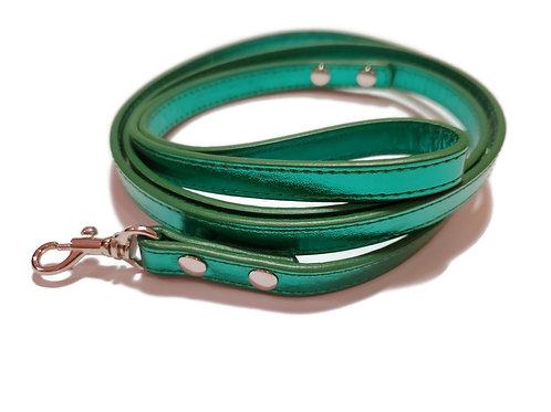 Metallic green and chrome leash