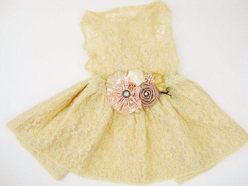 Beatrice Dog Dress