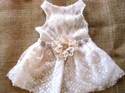 Silver & Champagne Dog Dress