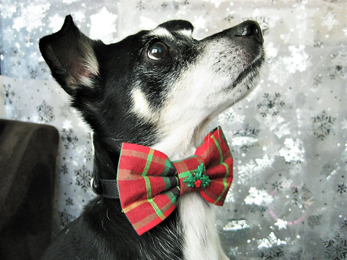 Red Plaid Bow tie collar | Holiday bowtie collar