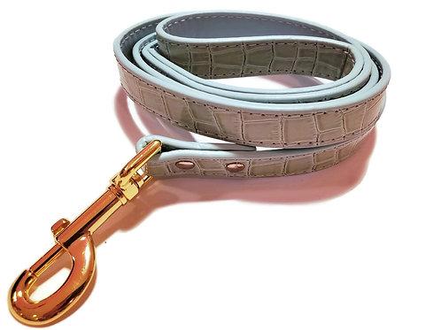 Mint Croc and gold leash