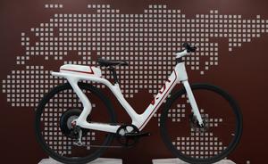 KIA eco bike baja.PNG