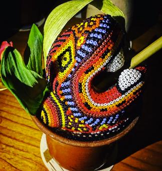 Xaveri, festival étnico para la comunidad huichol