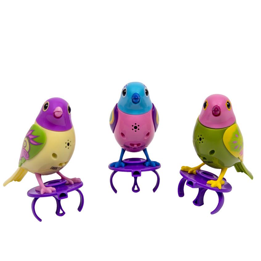 Digibirds_01