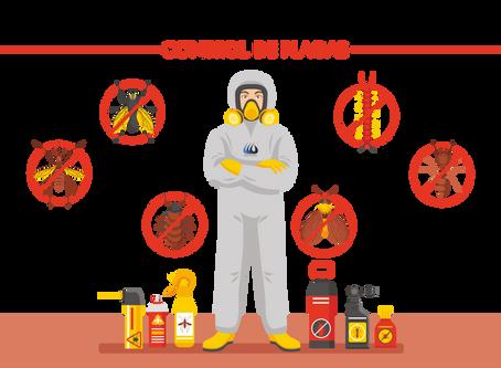 Requisitos a tener en cuenta cuando contratemos a una empresa de Control de Plagas