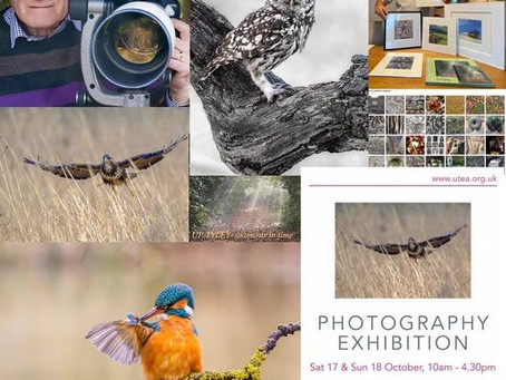 Photography Exhibition: Wilcock & Clarke