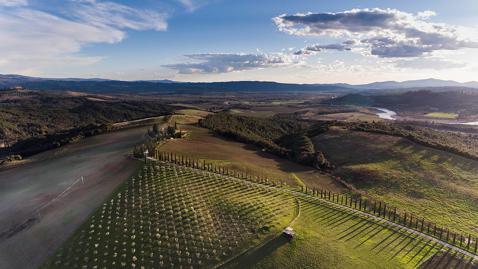 Cupano from a drone - March 2017.jpg