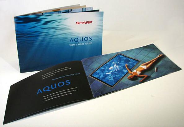 aquos_brochure.jpg