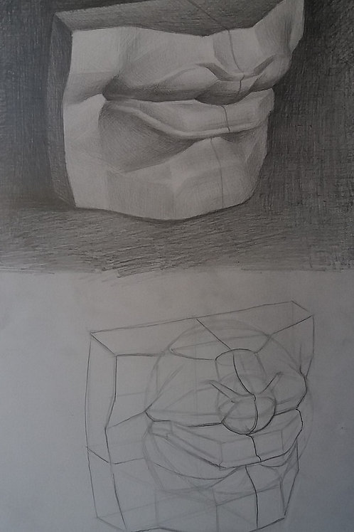 Mouth Cast Drawing