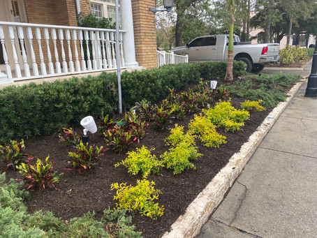 We're gearing up for March Mulch Madness!