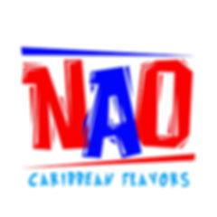NAO3.jpg