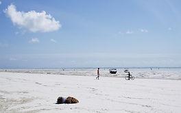 LDNS Nghĩa Sĩ Beach Clean-Up Day