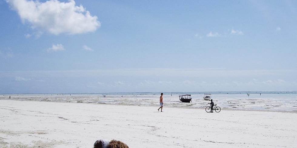 Save the Beach-Beach Clean-up