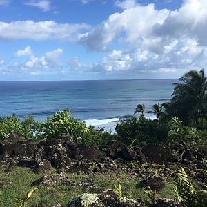 Hawai'i Kūpuna Hula Festival