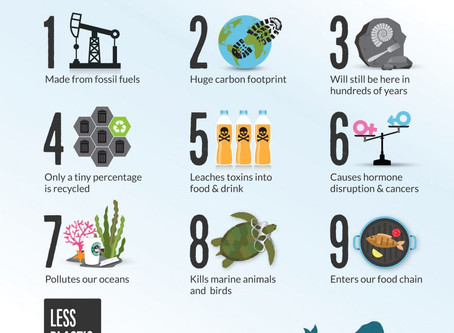 Plastic Free July: 4 takeaways to reduce takeaway plastic consumption
