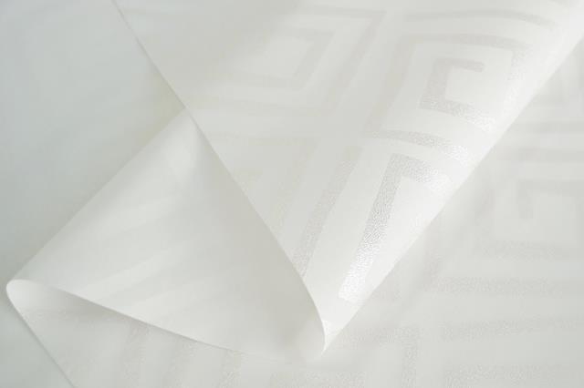 B1025 1 (Copy)