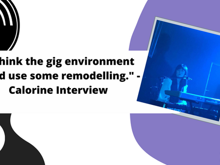 """""""I think the gig environment could use some remodelling."""" - Calorine Interview"""