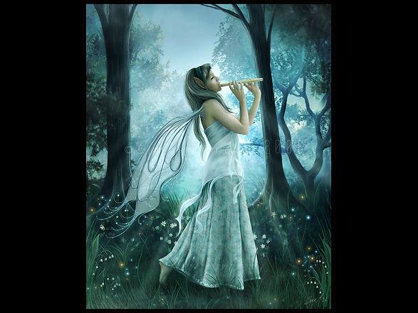 fairy-4.jpg