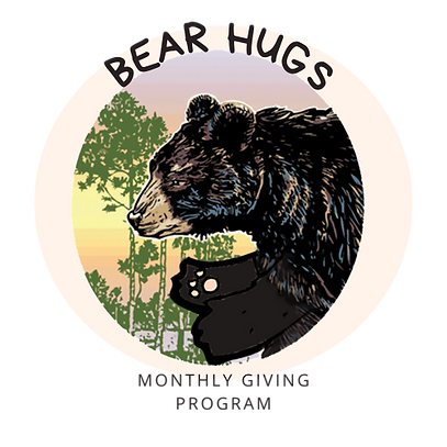 Bear Hugs 2 no background.png