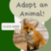 Adopt an Animal Post it.png