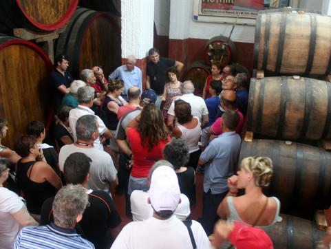 winetour_mothia.jpg