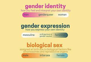 Gender-Horizontal.jpg