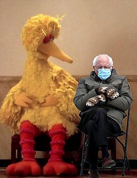 BernieWBigBird-VerticalNew.jpg