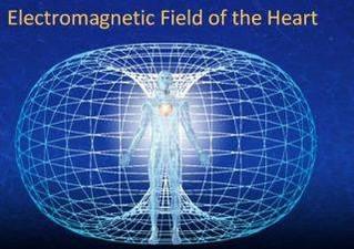 Torus - Electromagnetic Field Of The Heart