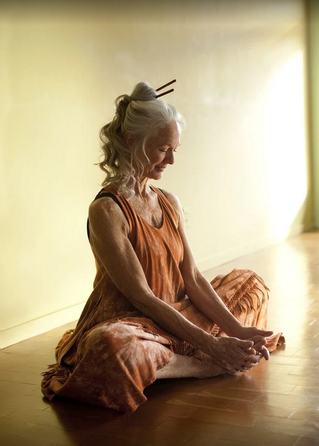 Retirement Of The Mind Is Meditation
