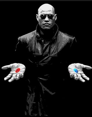 Your Last Chance - Do You Take The Blue Pill Or The Red Pill?