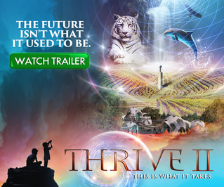 Thrive II