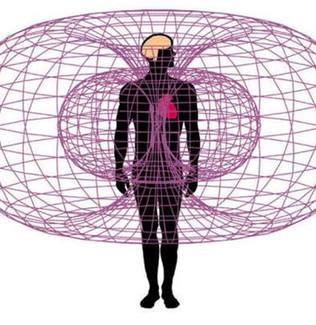 Toroidal Energies Of The Human Body