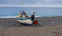 Möwe Boot Strand