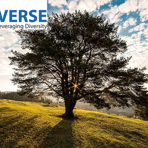 Tata Innoverse-Predictive model for determining strength of trees and forecast falling of trees