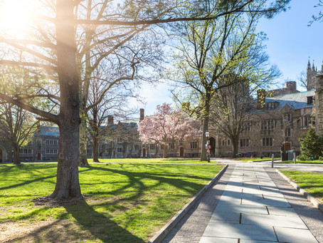 How To Write The Princeton University Supplemental Essays (2019-2020)
