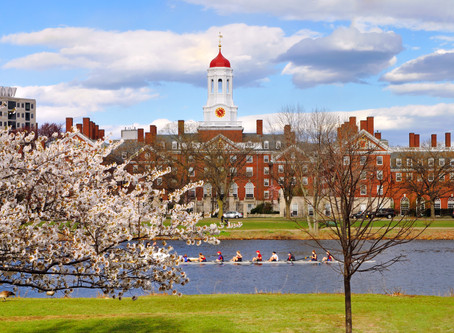 How To Write The Harvard University Supplemental Essays (2020-2021)