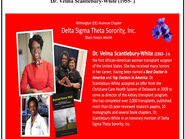 Delta Sigma Theta Sorority Inc.