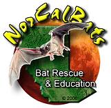 NorCal Bats logo.png